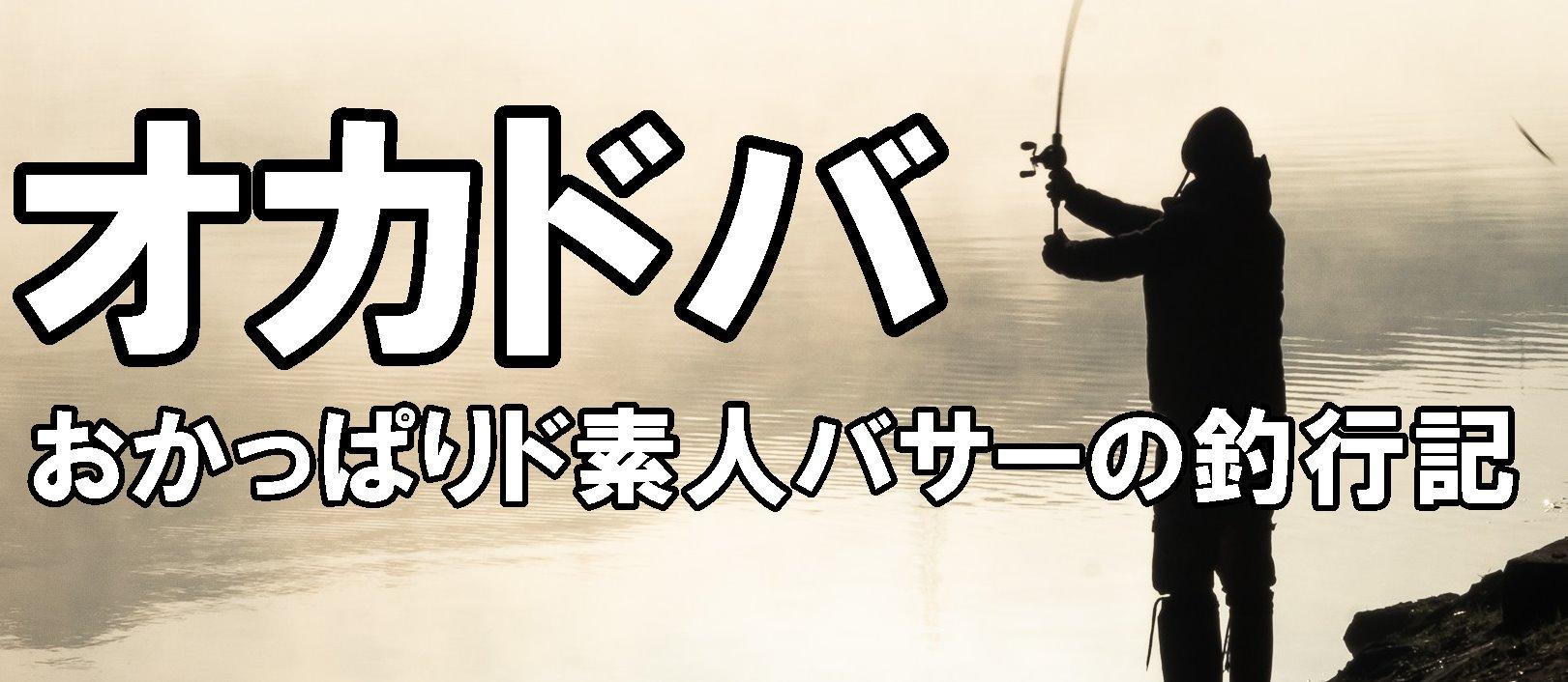 オカドバ ~おかっぱり専門ド素人バサーの釣行記~