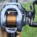 陸っぱりバス釣りにはナイロンラインが最適?を考察